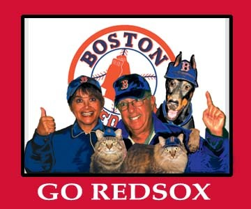 Redsoxs_used